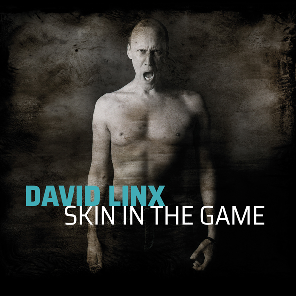 David Linx: Nouvel album Skin in The Game